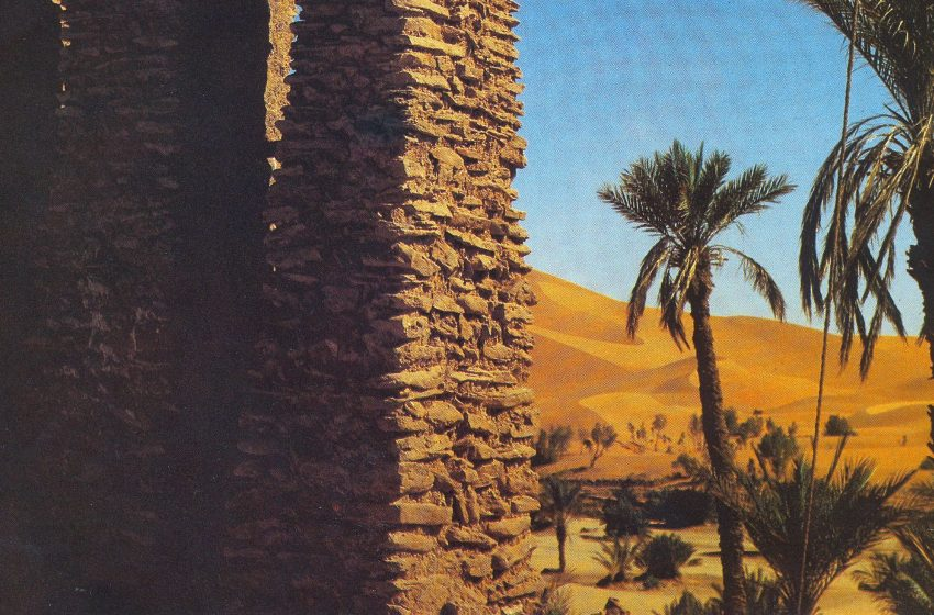 MATVEJEVIĆ: Kruh, islam i Arapi