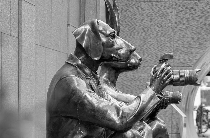 BISER: Čovjek ujeo psa