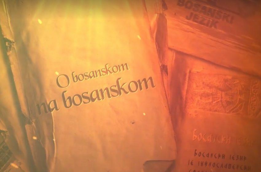 """""""O bosanskom na bosanskom"""": Jezičke odlike natpisa na stećcima"""